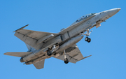 United States Marine Corps McDonnell Douglas F/A-18D Hornet (163994) at  Yuma - MCAS, United States