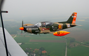 (Private) SIAI-Marchetti SF.260 (D-EDUR) at  Bohmte - Bad Essen, Germany