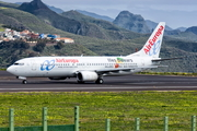 Air Europa Boeing 737-85P (EC-HGO) at  Tenerife Norte - Los Rodeos, Spain