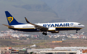Ryanair Boeing 737-8AS (EI-GDG) at  Gran Canaria, Spain