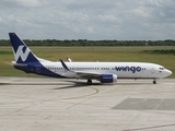 Wingo Boeing 737-8V3 (HP-1536CMP) at  Santo Domingo - Las Americas-JFPG International, Dominican Republic