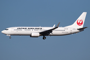 Japan Airlines - JAL Boeing 737-846 (JA305J) at  Tokyo - Narita International, Japan