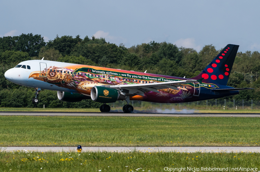 Brussels Airlines Airbus A320-214 (OO-SNF) | Photo 339237