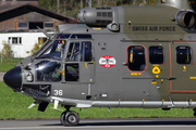 Swiss Air Force Eurocopter AS532U2 Cougar MKII (TH98) (T-336) at  Meiringen - Unterbach, Switzerland