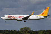 Pegasus Airlines Boeing 737-8AL (TC-CRB) at  Hamburg - Fuhlsbuettel (Helmut Schmidt), Germany