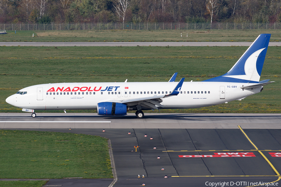 AnadoluJet Boeing 737-86N (TC-SBV) | Photo 409987