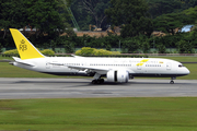 Royal Brunei Airlines Boeing 787-8 Dreamliner (V8-DLA) at  Singapore - Changi, Singapore